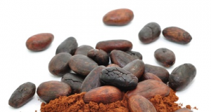 cacao.png