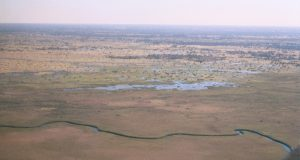 okavango_delta_from_1200_ft.jpg