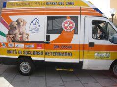 ambulanzalndcsalerno.jpg