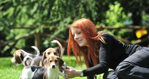 michela vittoria brambilla con beagle 2.jpg