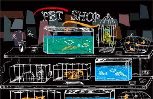 negozio animali.jpg