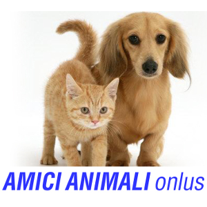amici-animali-onlus