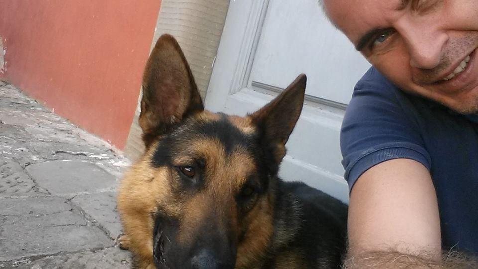 Firenze Premio Alla Memoria Al Cane Poliziotto Pando Nelcuoreorg