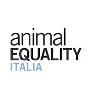 11 b - animal equality