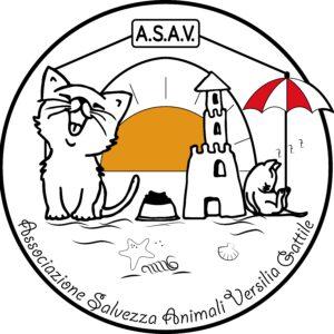 18 b - Asav-min