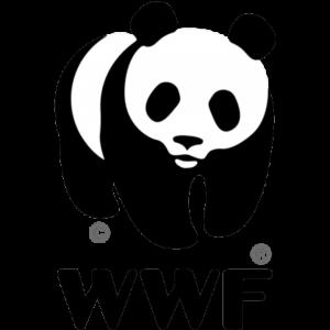 58 - Wwf
